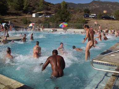 ONLY IN MALIBU: Skinny Dipping Tax Evaders