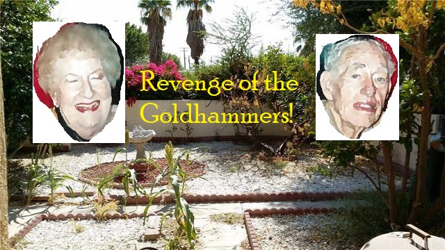 Revenge of the Goldhammer Family