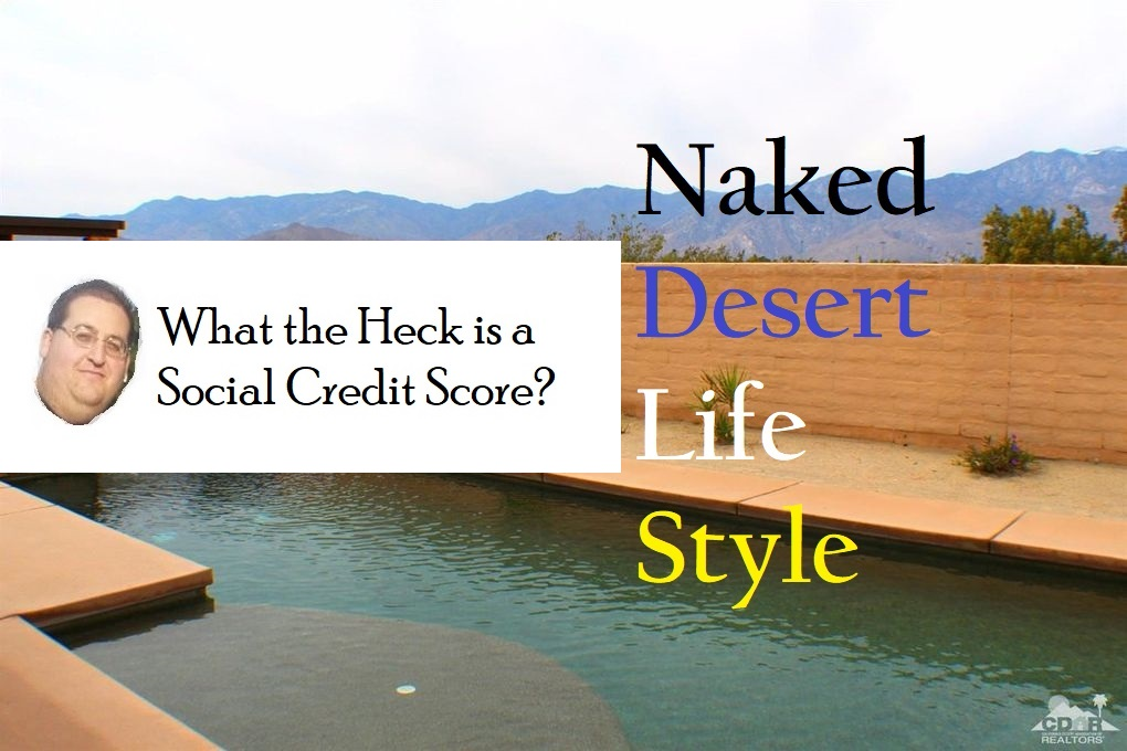 What's Your Social Credit Rating?