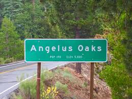 angeles oaks, california official highway sign